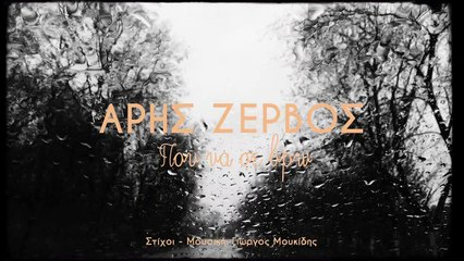 Aris Zervos - Pou Na Se Vro (Official Video Lyric)