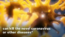 Fact-Checking Coronavirus Misinformation: 8 Myths Debunked About The Covid-19 Virus