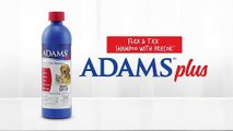 Adams Plus Flea & Tick Shampoo with Precor, 24-Ounce, Blue | PuppySimply