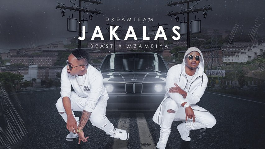 DreamTeam - Jakalas