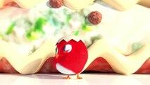 Cuckoo - Dessins Animés Drôle #86 | Dessin Animé Complet en Français 2020