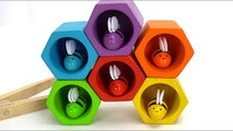 Preschool Learning Video with Lots of Fun Educational Toys-