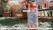 SALE% +62 813-2666-1515 | Harga Souvenir Wisuda Tk Unik di Bogor