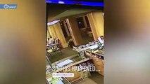 دب يثير الذعر في أحد الفنادق الأمريكية