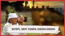 Hari Raya Nyepi, Sepi Tanpa Ogoh-ogoh