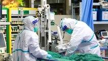Nobel Ödüllü biyofizikçi Michael Levitt: Koronavirüs salgınının sonuna yaklaşıldı
