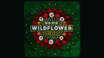 5 Seconds of Summer - Wildflower