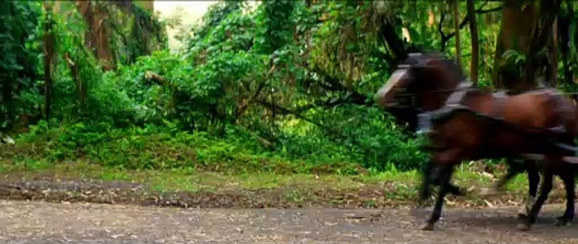 RUNNING FOR GRACE Clip - Horse Race