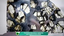 Cientistas descobrem meteorito com supercondutividade