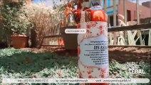 BEST SELLER!!! +62 813-2666-1515 | Beli Souvenir Wisuda Untuk Cowok di Makassar