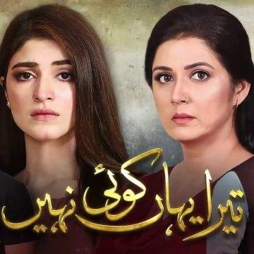 Tera Yahan Koi Nahin Episode 25 HUM TV Drama 24 March 2020