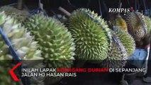 Yummy! Manis dan Legit Durian di Kampung Sukadana Ham Lampung