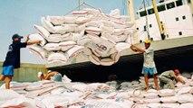 Việt Nam không thiếu gạo giữa mùa dịch Covid-19