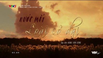 Nước Mắt Loài Cỏ Dại Tập 36 Phim Việt Nam VTV3