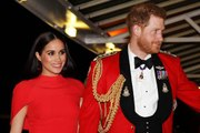 Meghan Markle and Prince Harry Could Make a Guest Appearance on This Hugely Popular Sitcom