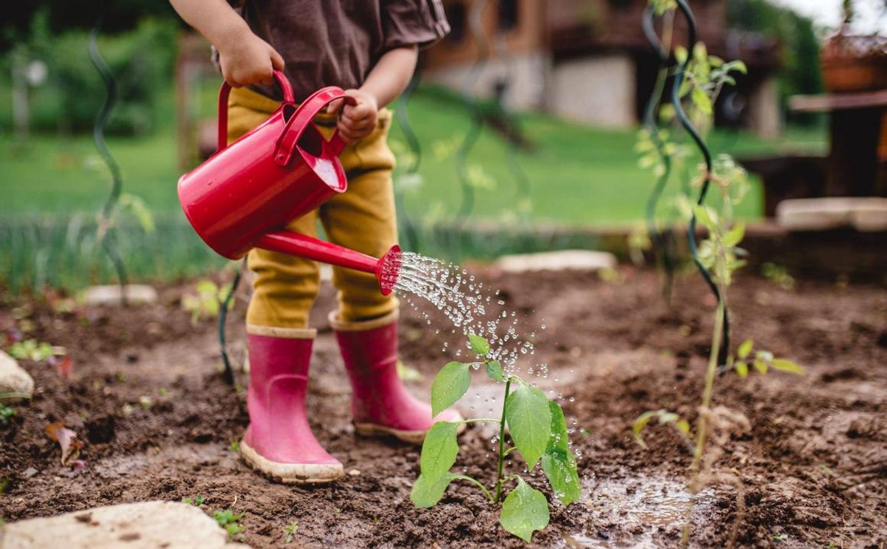 Great Garden Activities For Kids