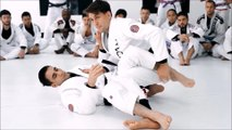 Mendes - Passing the guard standing - Entry 2