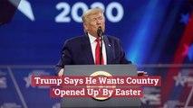 Trump Has Easter Goals