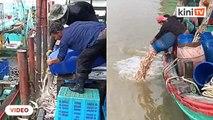 Bukan hanya sayur, nelayan juga terpaksa buang ikan