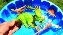 Learn Names with Dino Puppet, Jurassic World Dinosaur Educational Video, Dinosaurs Toys for kids
