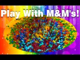 Learn Colors in Romanian with MandM's-