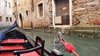 VENICE VIHAR  | JAY VASAVADA  | ITALY
