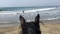 Police wait on beach for surfer amid lockdown