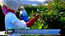 Impacto del coronavirus en el sector agropecuario
