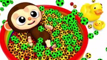 Learn Colors Little Baby Monkey Soccer Ball Finger Family Song Nursery Rhymes Kid Song
