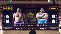 Hakuho vs Aoiyama - Haru 2020, Makuuchi - Day 14