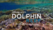 Disneynature's Elephant & Dolphin Reef - Trailer