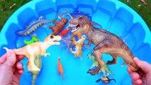 Dinosaurs for kids, Dinosaurs Find Baby Mom, Jurassic World Dinosaur Toys Kids