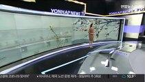 [날씨] 찬 공기 유입 쌀쌀…아침 경기·영서 일부 영하권