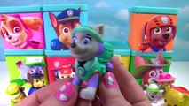 Paw Patrol Toy Surprise Boxes