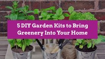 5 DIY Garden Kits to Bring Greenery Into Your Home