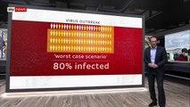 Coronavirus_ How bad will it get?