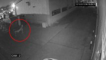 Shocking Ghost Sighting from An Old Factory - Real Ghost Caught On CCTV Camera - Scary Videos