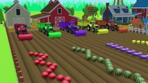 Fruits and Vegetables on The Farm for Kids