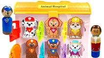 -  Paw Patrol Animal Hospital and Mr Play Doh Dentist