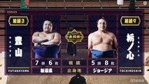 Yutakayama vs Tochinoshin - Haru 2020, Makuuchi - Day 14