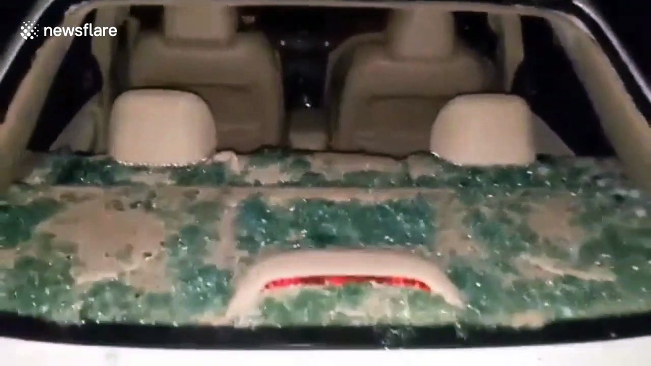 2 ALICE COOPER DECAL Bogo Stickers For Car Truck Window Bumper Laptop Rv Jeep