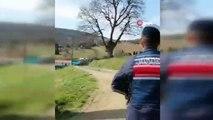 Jandarma, dağda hayvan otlatan yaşlı kadını böyle uyardı