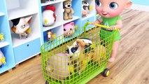 Kids Toy Videos US - El niño pequeño compra animales del juguete en el supermercado. Granja. Tienda de juguetes
