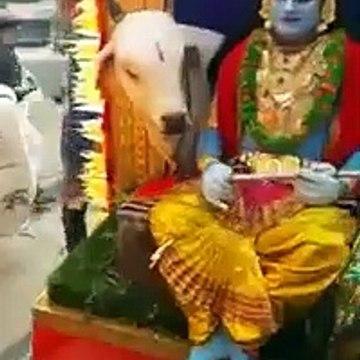 आओ बच्चो तुम्हे दिखाये झाँकी bhagvan की - dev भक्ति गीत - Aao Baccho Tumhe Dikhaye Jhanki 2
