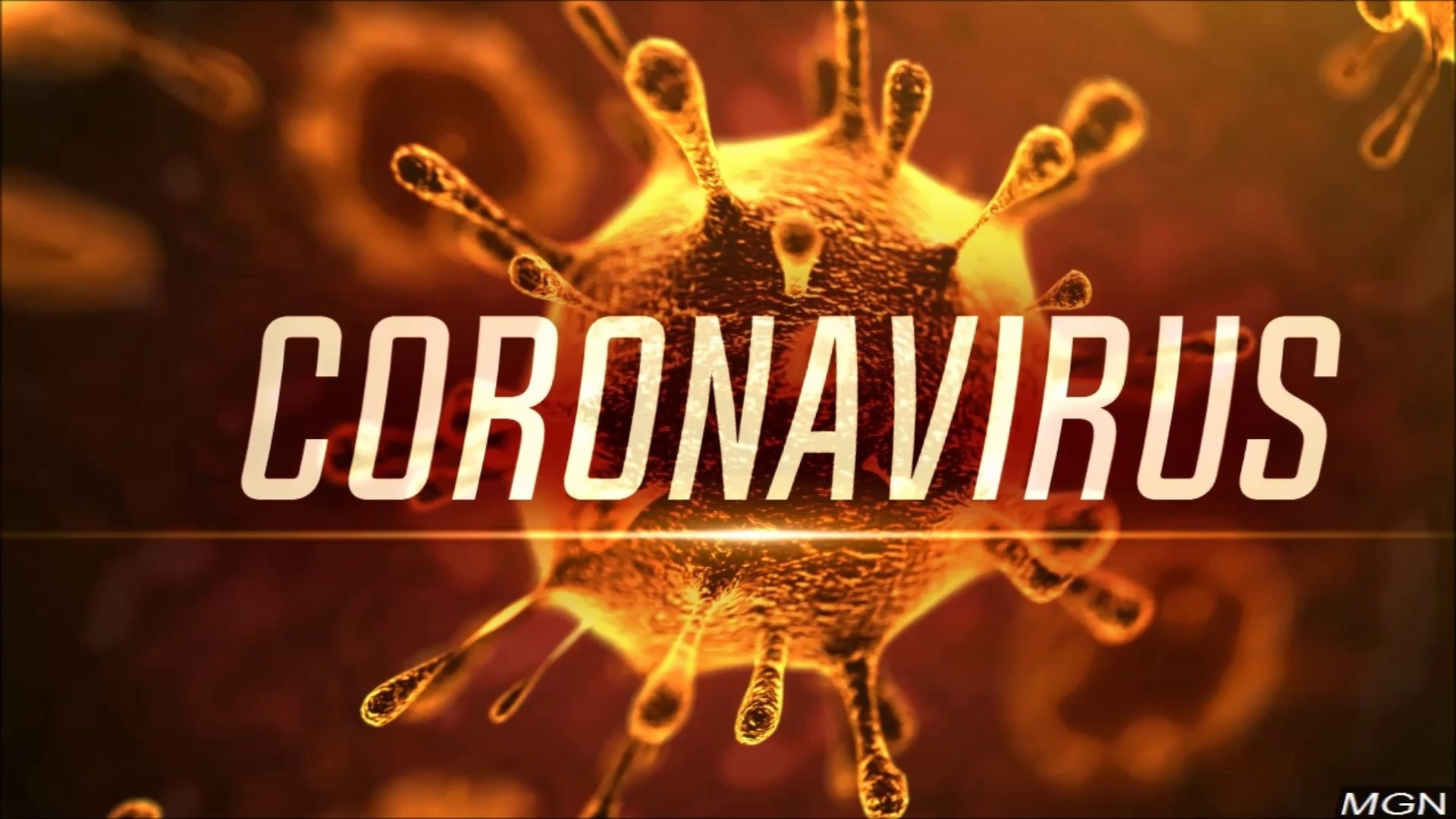 Coronavirus (COVID-19) Boosting Diet For your immune system To defeat Coronavirus | world map and li