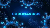 Coronavirus  COVID 19 Helpful ways to strengthen your immune system and fight off Coronavirus | world map and live counter on confirmed cases | coronavirus world map and live counter on confirmed cases |  coronavirus live map coronavirus map