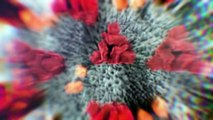 DÉSINFOX - La chloroquine est-elle le remède miracle ?