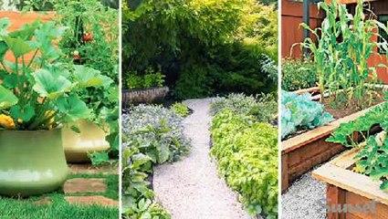 Show off your edible garden