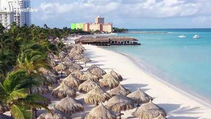 Coronavirus leaves Aruba's white sand beaches void of tourists in eerily beautiful drone footage
