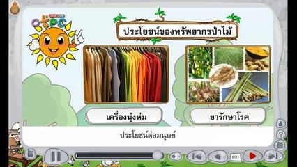 สื่อการเรียนการสอน ทรัพยากรป่าไม้และสัตว์ป่า ป.3 วิทยาศาสตร์